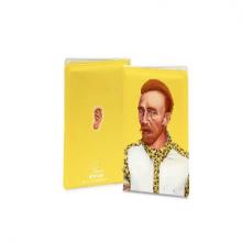 כיסוי לדרכון מגניב באיור בדמותו של וינסנט ואן גוך - Vincent van Gogh