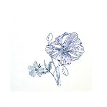 כרטיס ברכה - פרחים כחול/לבן